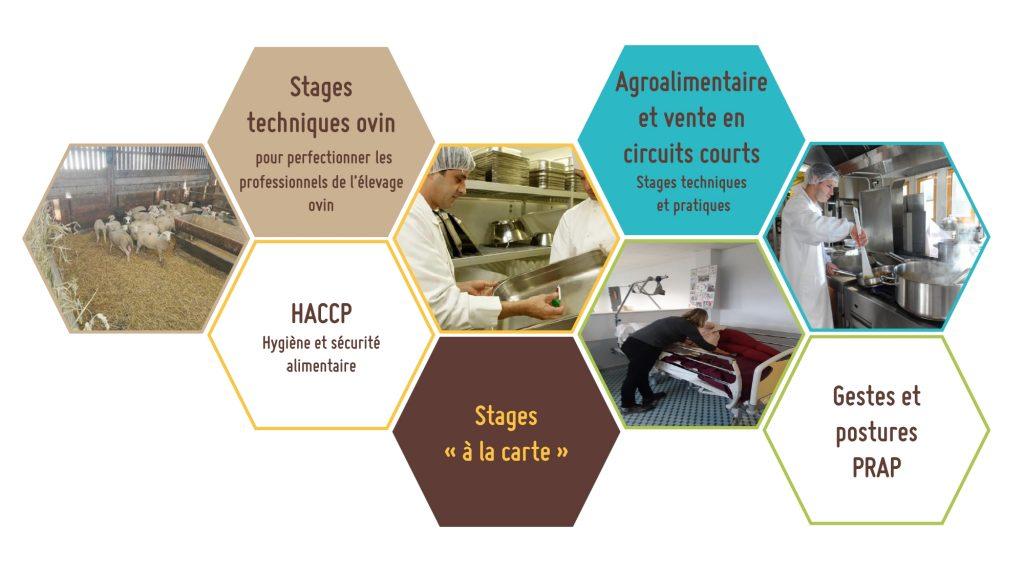 Le CFPPA Les Vaseix Bellac propose aussi des stages techniques ovins ainsi que des stages techniques et pratiques en agroalimentaire. La méthode HACCP et aussi enseigné au CFPPA Les Vaseix Bellac, tout comme des formations gestes et postures